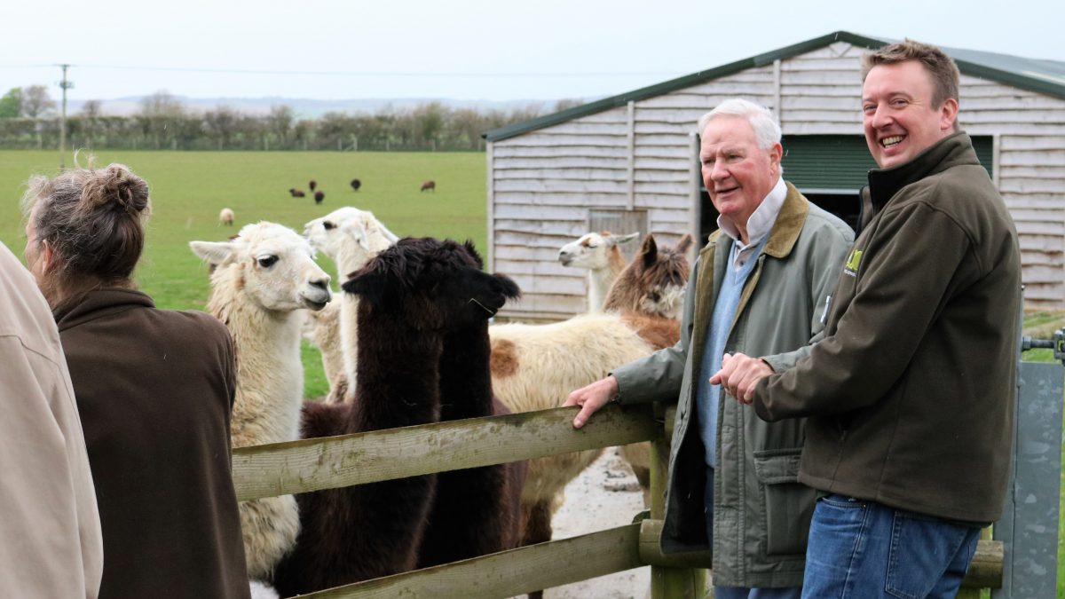 Man with dementia at farm with carer