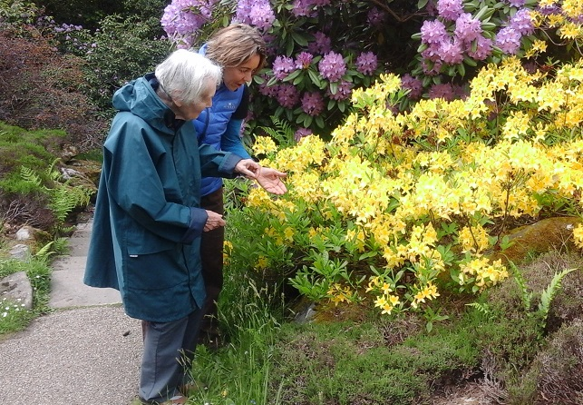 Lady with dementia looking at flowers with carer