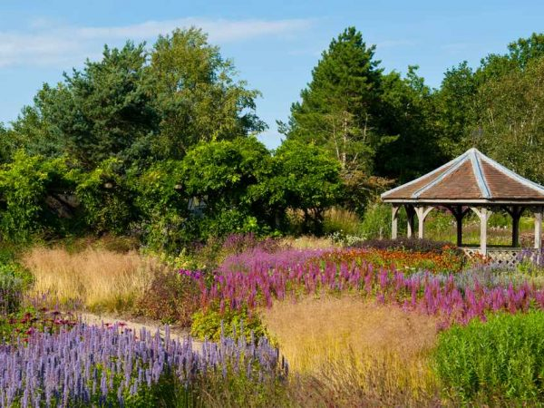 Pensthorpe Norfolk on Support Dementia Holiday